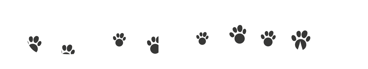 Cleaner Paws