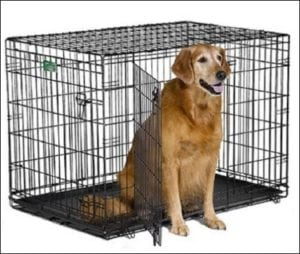 Midwest iCrate Folding Large Metal Dog Crate