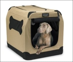 Petnation port-A-Crate E2 Indoor & Outdoor Pet Crate