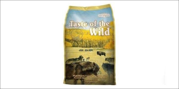 taste of the wild grain free dog food