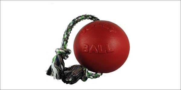 Jolly Pets Romp-n-Roll Ball Indestructible Dog Toy