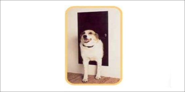 Solo Pet Door Automatic
