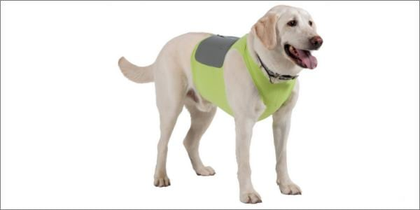 K9 Fitvest on Dog